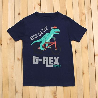 dino tee shirt for boys-lilchamps